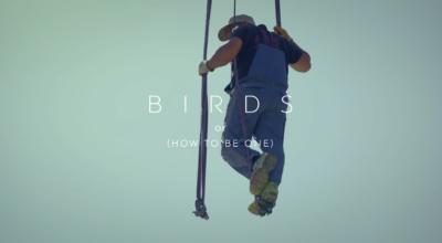 BIRDS still 6
